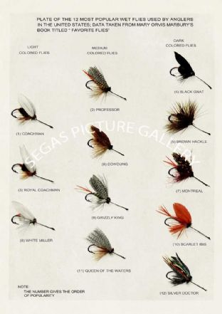 Wet Flies (12 popular wet flies)